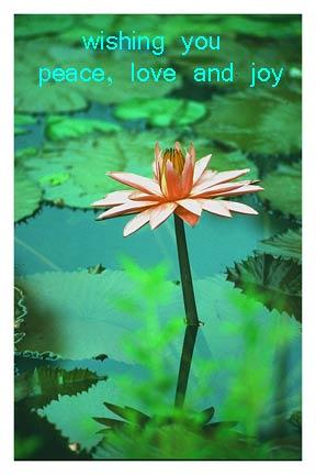 free ecard  inspirational, friendship, love. send free meditations., Birthday card