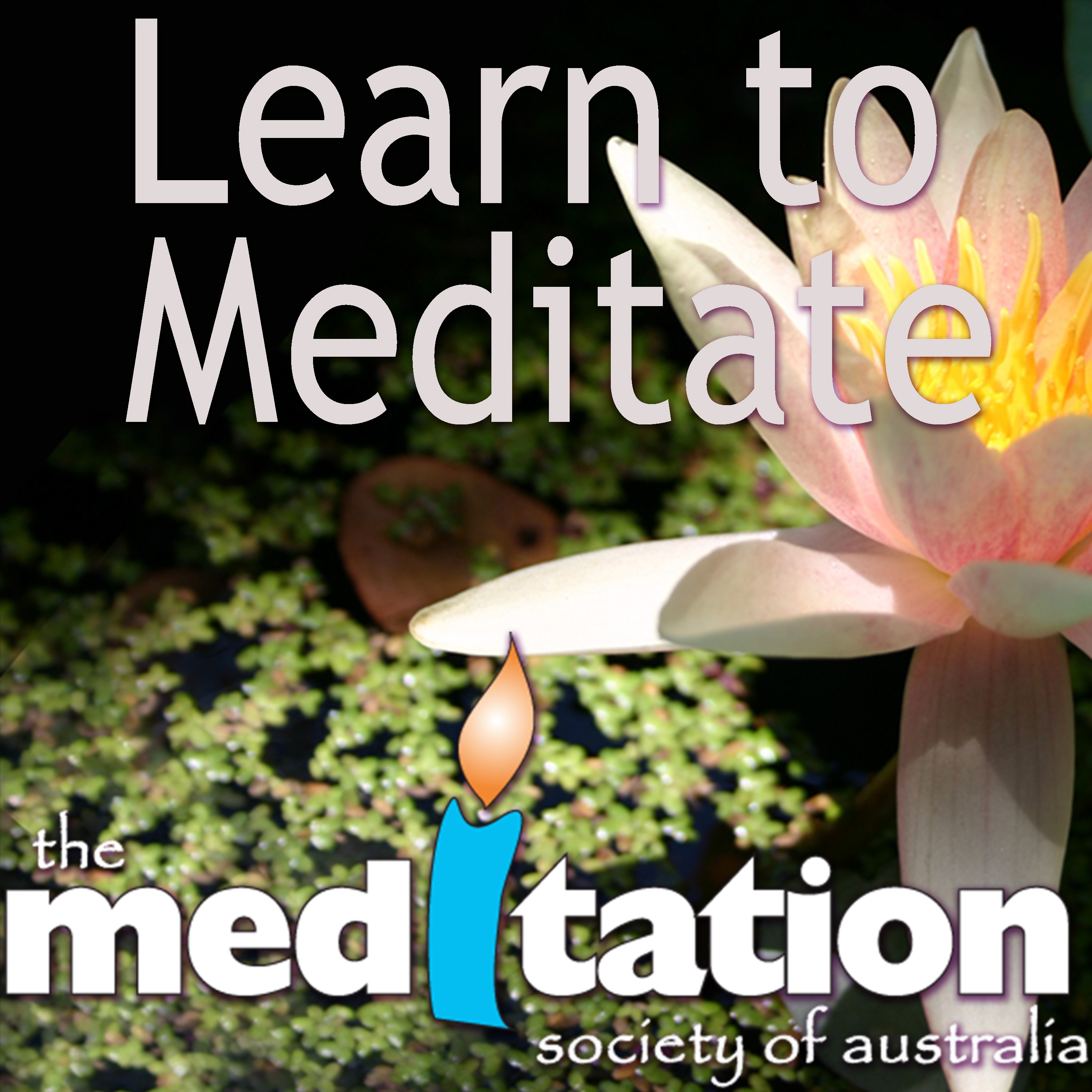 Learn to Meditate Audio Podcast